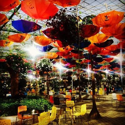 Dubai Miracles Gardens